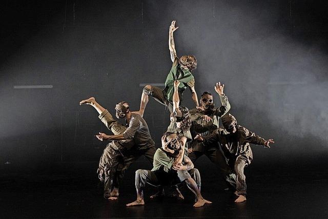 Beim Freiart-Festival in Merzhausen tanzen eine Woche lang Ensembles aus aller Welt