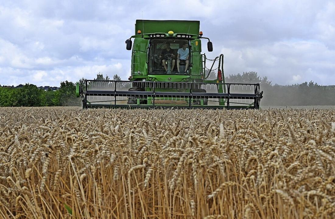 Auch die Landwirtschaft  ist durch den Klimawandel zu Anpassungen gezwungen.   | Foto: Peter Zschunke (dpa)