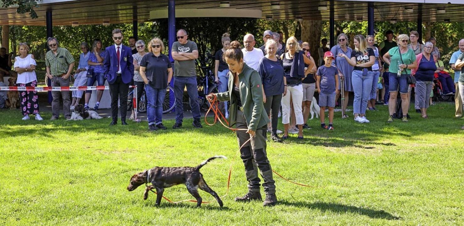 Milena Eisele zeigte den Gästen die Arbeit mit ihrem Jagdhund.  | Foto: Michael Wendler