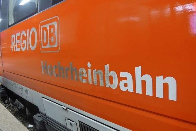 Vogel kollidiert mit Zug der Hochrheinbahn und löst Großeinsatz aus