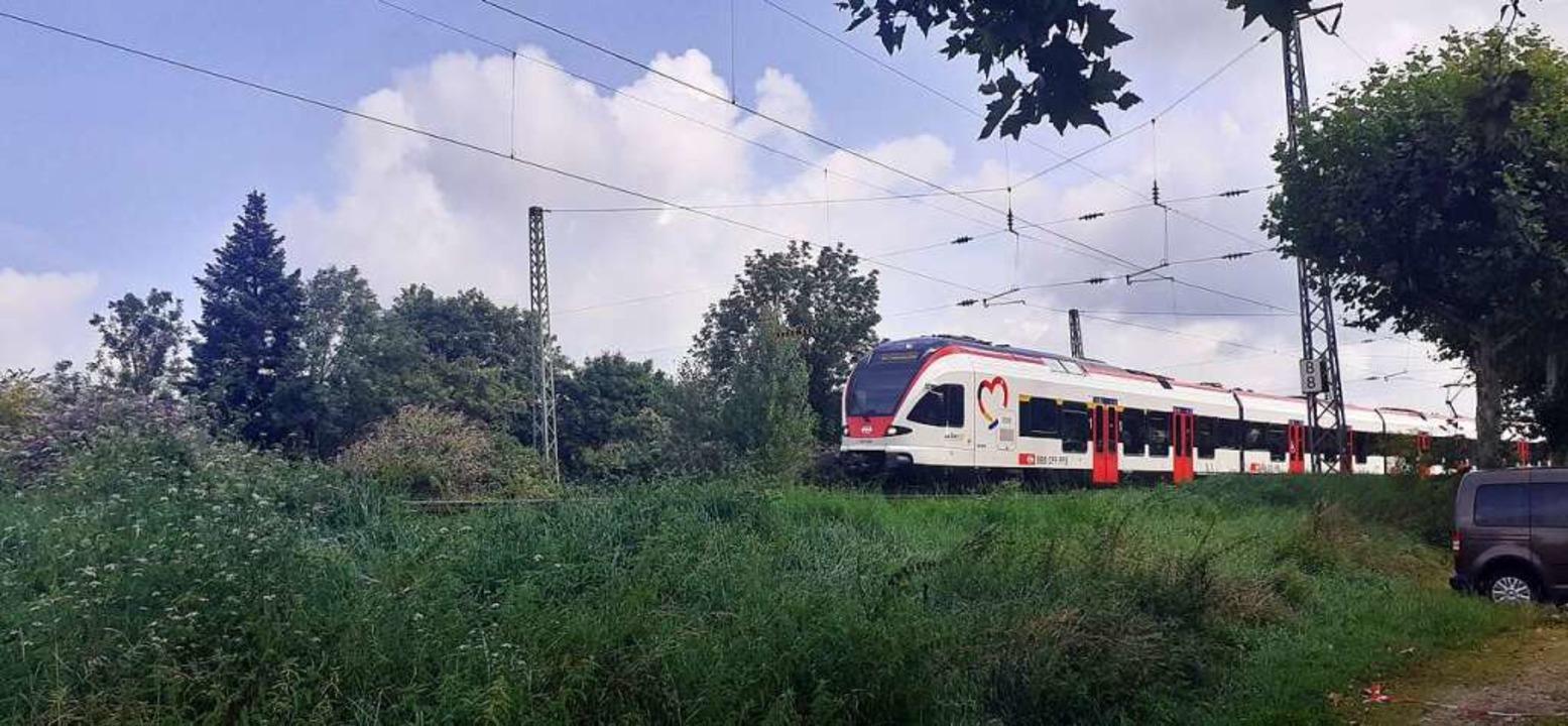Die Regio S-Bahn  | Foto: Peter Gerigk