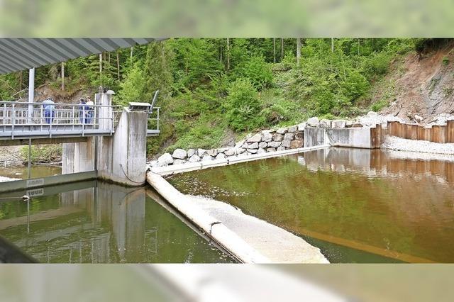 Wasserkraft hat großes Potenzial