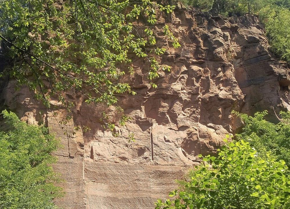 Buntsandsteine für den Bau des Freibur...tammen aus dem Heimbacher Steinbruch.     Foto: Bildnachweis: Bildarchiv Geschichts- und Bürgerverein Heimbach