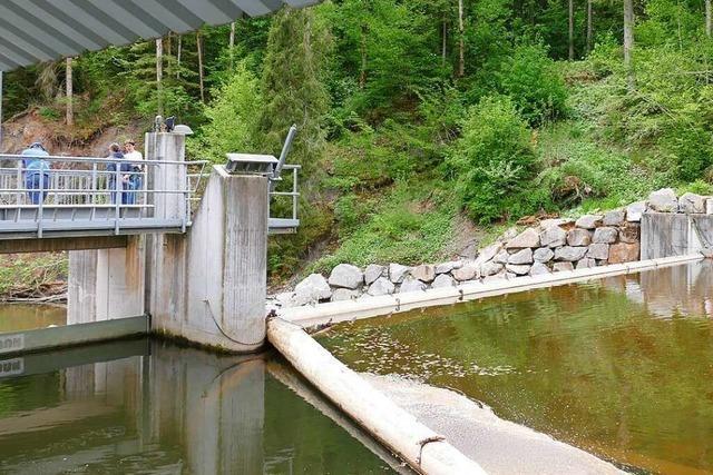 Wasserkraftwerk an der Wutach liefert zuverlässig Strom – auch in trockenen Jahren