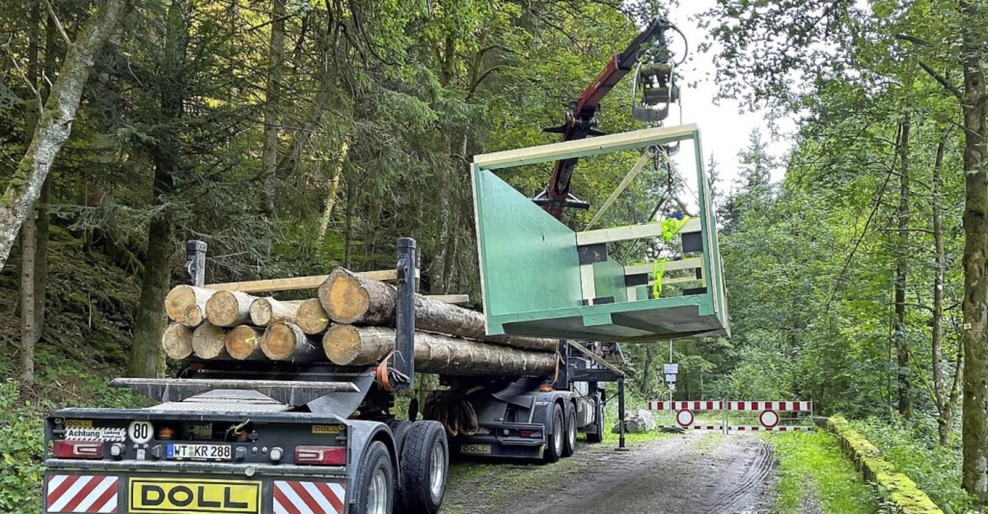 Zwölf Meter lang ist der Steg, der übe... den Wald transportiert werden musste.  | Foto: Gemeinde Murg