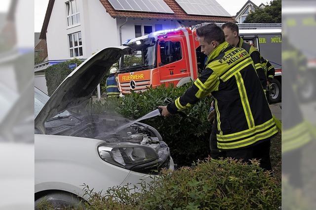 Feuerwehr gut beschäftigt