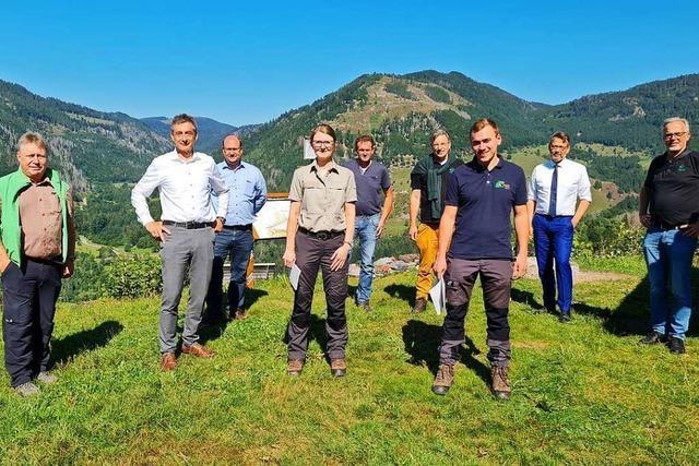 Sachverständige fordern: Waldumbau muss staatlich gefördert werden