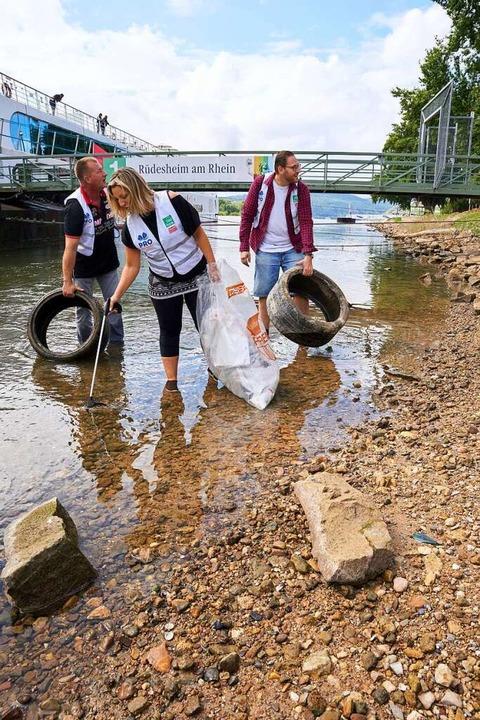 Rund 50.000 Helfer in sieben europäisc...Rheins und seiner Nebenflüsse säubern.  | Foto: Thomas Frey (dpa)