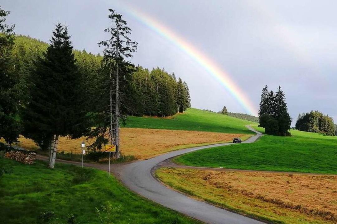 Regen an 18 Tagen im August, da war ei... ein Lichtblick, wie hier in Breitnau.  | Foto: Peter Behnen