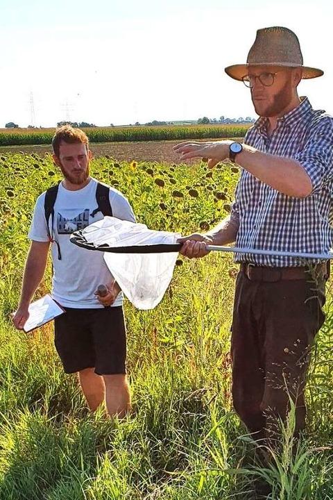 René Greiner (mit Kescher) hat in der Blühfläche reichlich Insekten gefunden.    Foto: Julius Wilhelm Steckmeister