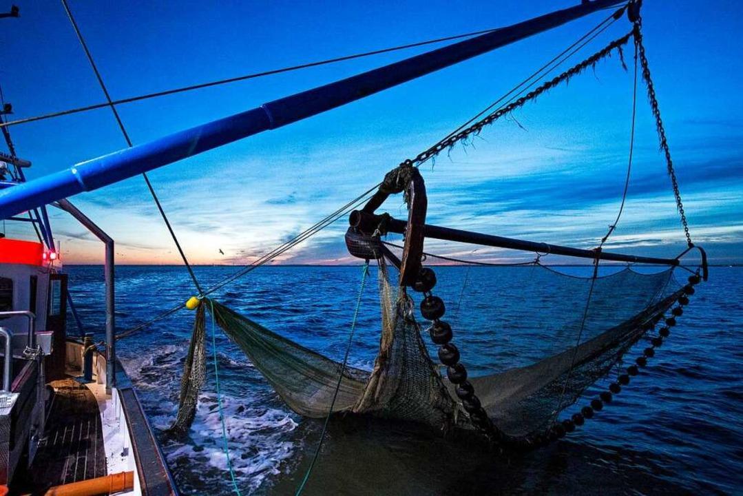 Ein großes Schleppnetz für die Fangfahrt durch die Nordsee  | Foto: Ingo Wagner