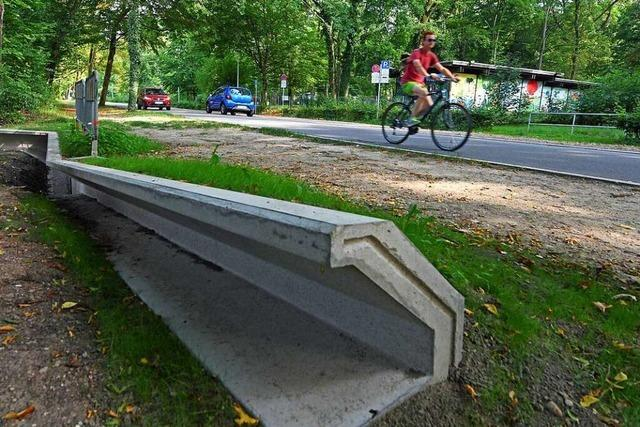 Größte Gefahr für Kröten im Freiburger Möslepark sind nun die Radler