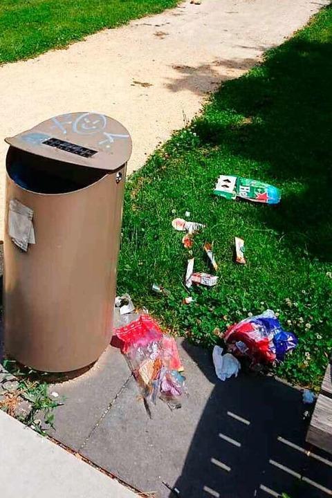 Müll neben einem Eimer im Bürgerpark  | Foto: Stadt Lahr