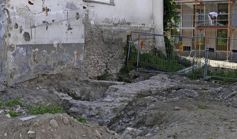 Etwa fünf mal ein Meter Mauer sind fre...erung des Scheelhauses genutzt werden?  | Foto: Frank Schoch