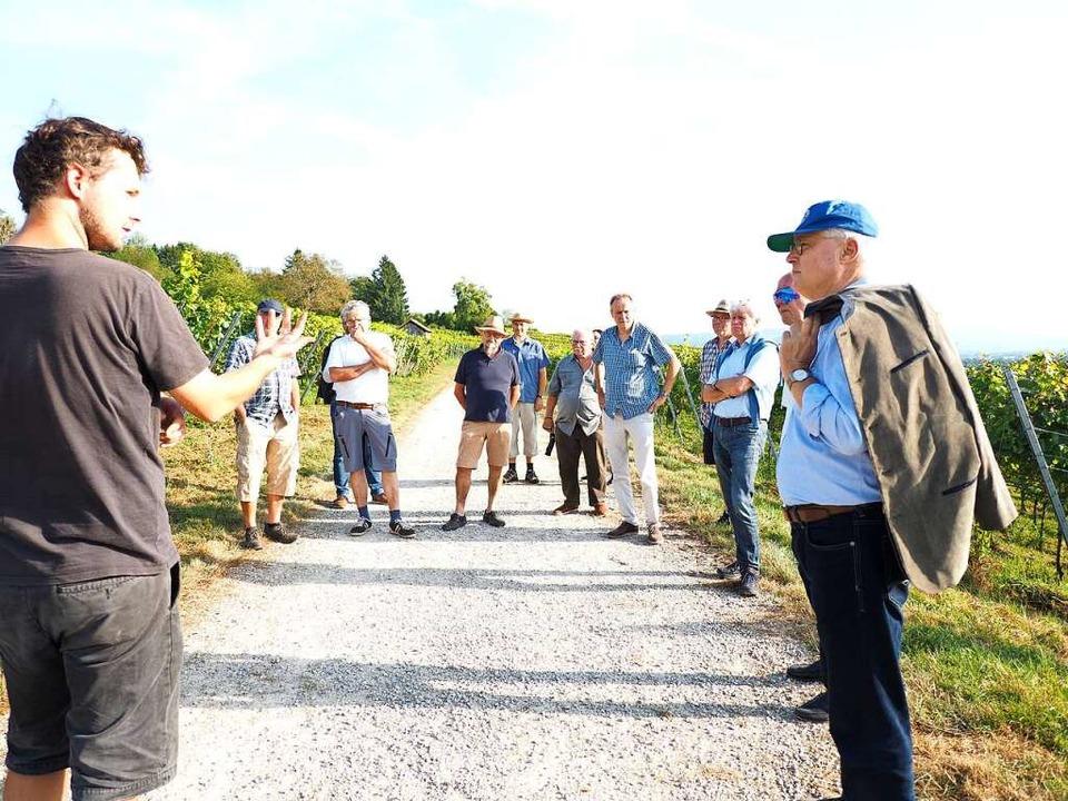 Johannes Schneider (links) führte OB D...meinderäte und Winzer durch die Reben.  | Foto: Herbert Frey
