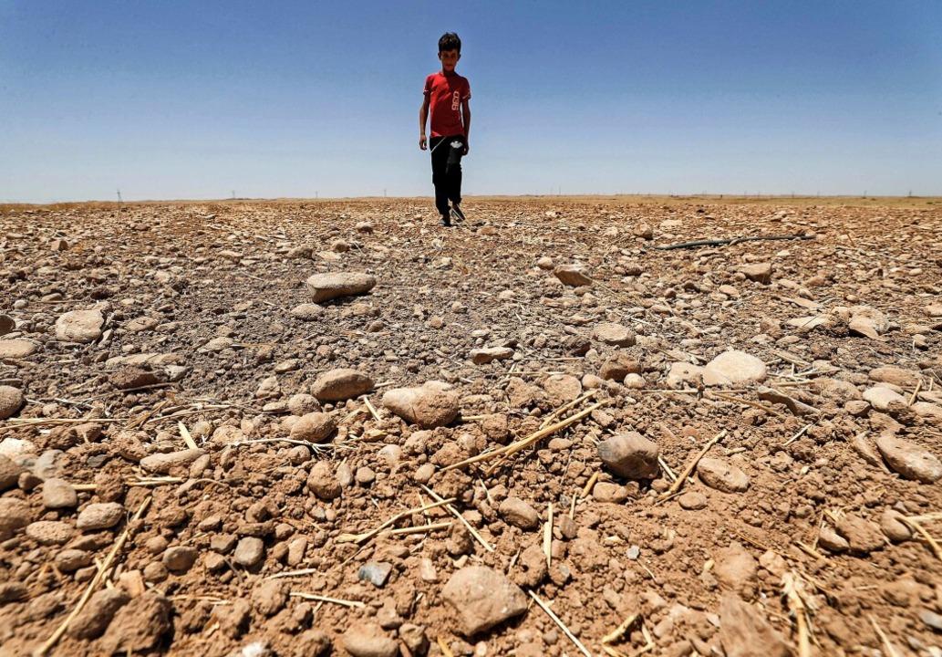   Foto: AHMAD AL-RUBAYE (AFP)