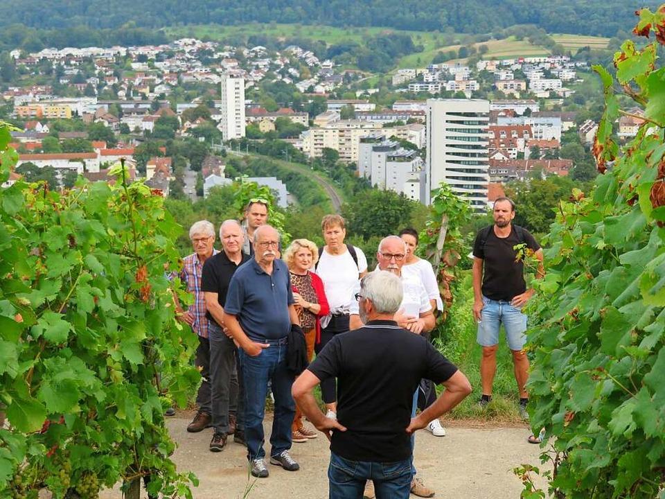 Vom Tüllinger Berg bot sich an der Reb...ng eine schöne Aussicht auf die Stadt.  | Foto: Peter Gerigk