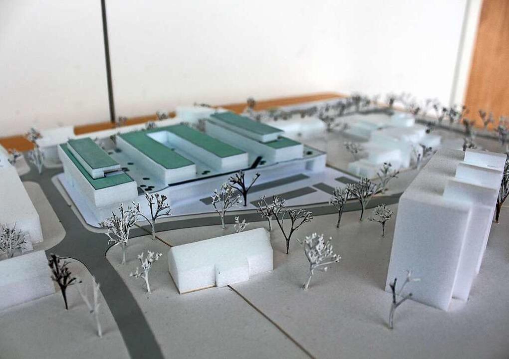 Vier Riegel mit bis zu 48 Wohnungen kö...aufsmarkt (oben im Modell) entstehen.   | Foto: Stadt Emmendingen