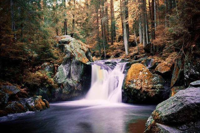 Sagenhaftes Naturschauspiel: Krai-Woog-Gumpen im Schwarzenbächletal