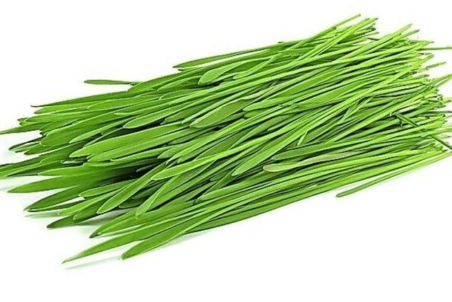NATURALIE: Kein Nährstoffwunder: das Weizengras