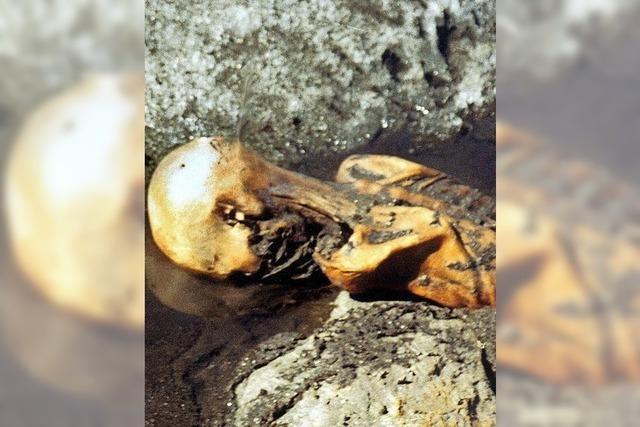 Die Mumie aus dem Eis