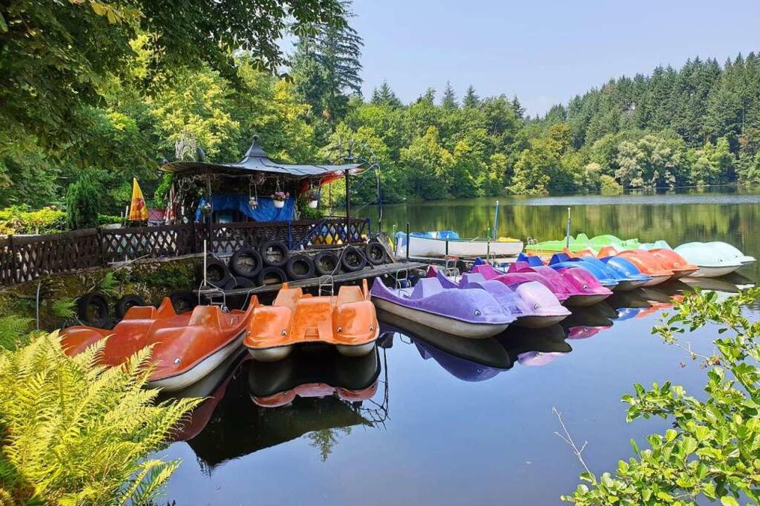 Einsteigen, bitte: Wer Lust hat, kann im Sommer  zum Tretbootkapitän werden.  | Foto: Gabriele Poppen