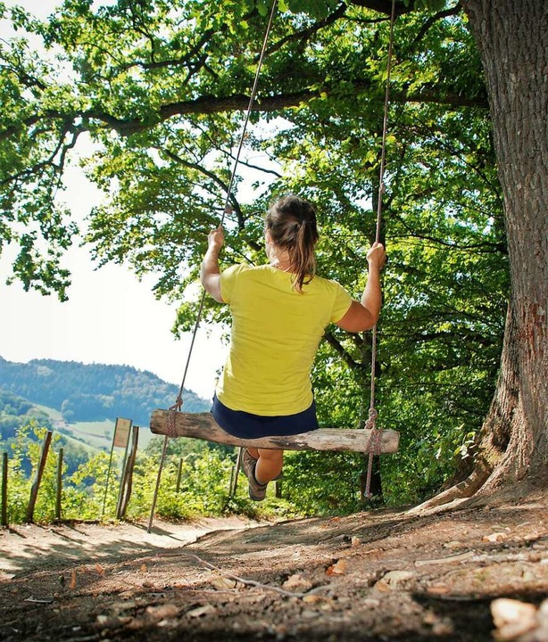 Waldschaukel bei Wildtal    Foto: Silke Kohlmann