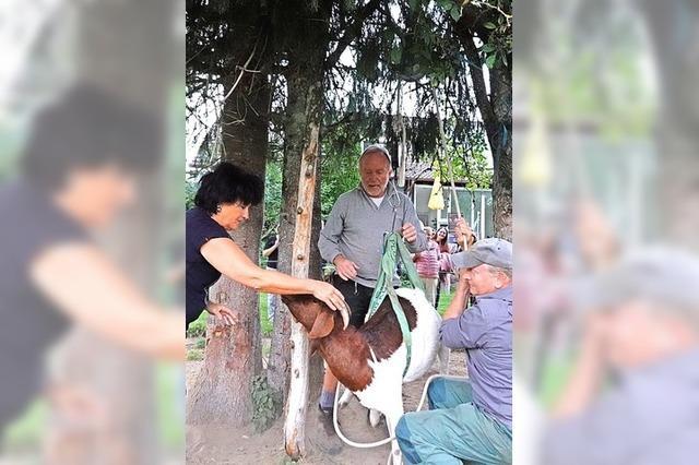 150 Besucher machen bei Segeter Dorfrallye mit