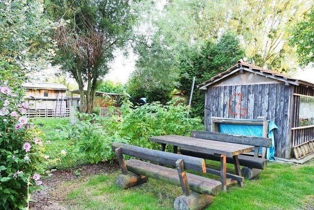 Behörde will Zeit geben für Suche nach Lösungen für Kleingärten