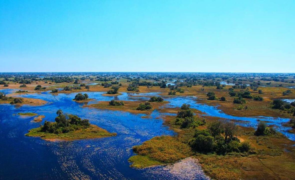 Das Weltnaturerbe Okavango-Delta ist eines der größten Feuchtgebiete Afrkas.    Foto: Evan Kaminer 8 stock.adobe.com)