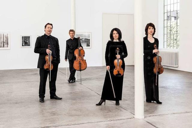Hochkarätig: Das Minguet-Quartett spielt beim Markgräfler Musikherbst