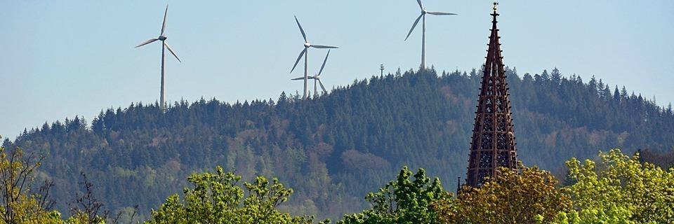 Initiative will, dass Freiburg bereits ab 2035 klimaneutral ist