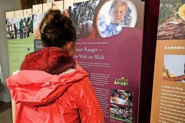 Landratsamt Lörrach zeigt Ausstellung
