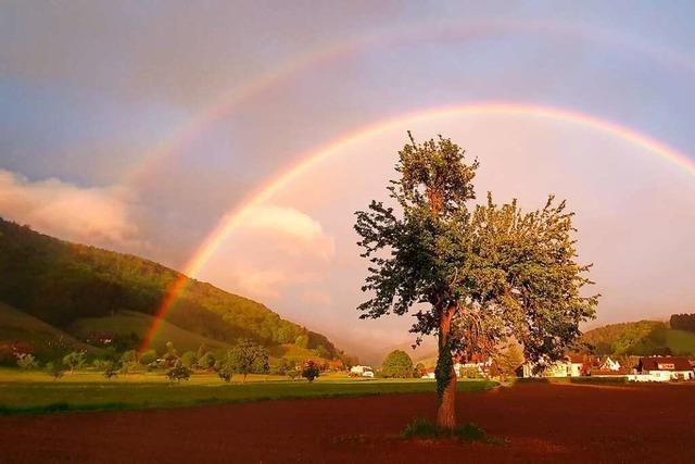 Doppeltes Regenbogenglück im Glottertal
