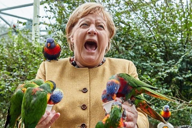 Australische Papageien fressen der Bundeskanzlerin aus der Hand