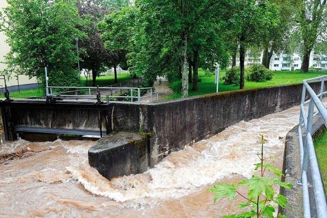 Müllheim arbeitet umfangreichen Maßnahmenkatalog zum Hochwasserschutz ab