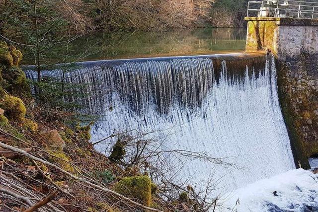 Freude über mehr Regen beim Kraftwerk Köhlgartenwiese