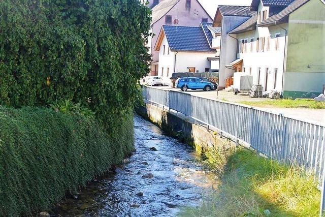Hasler zweifelt am Hochwasserschutz der Gemeinde – Bürgermeister widerspricht