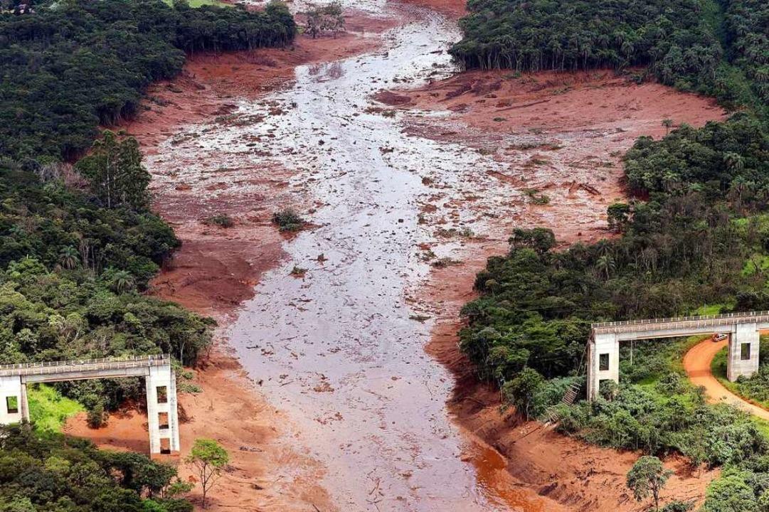 Nach dem Dammbruch begrub giftiger Sch...senerzmine Menschen, Häuser und Tiere.  | Foto: Andre Penner (dpa)