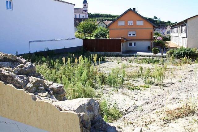 Mehrere Konzepte für Wohnungsbau im Winzerdorf