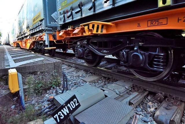 Ortschaftsrat Orschweier fürchtet mehr Lärm durch die neue Rheintalbahn
