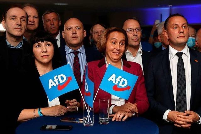 Die AfD schafft den Wiedereinzug in den Bundestag