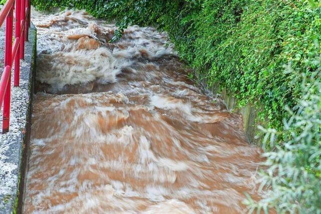 Spezial-Konto für Hochwasserschutz in Waldkirch