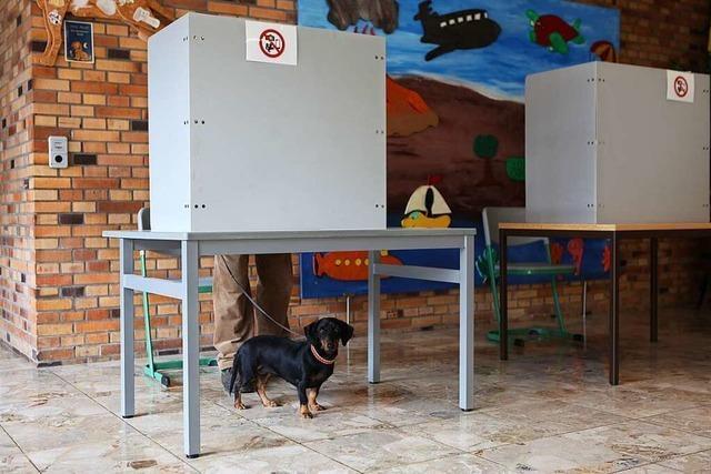 Drei kleine Parteien erreichen ein vierstelliges Ergebnis bei der Bundestagswahl