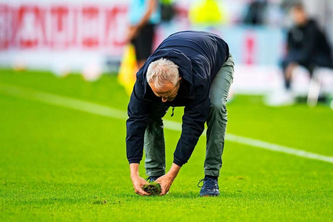 Litt heute: Der Rasen. Christian Strei... sich immer wieder, Löcher zu stopfen.  | Foto: Tom Weller (dpa)