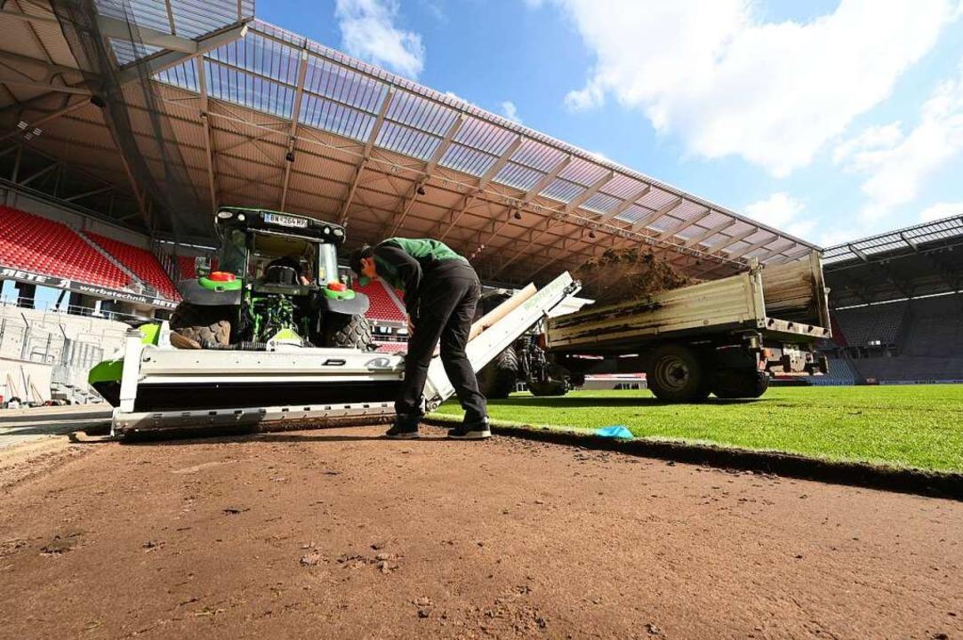 Pilzbefall und Nässeproblem: Der Rasen...d schon nach einem Spiel ausgetauscht.  | Foto: Achim Keller