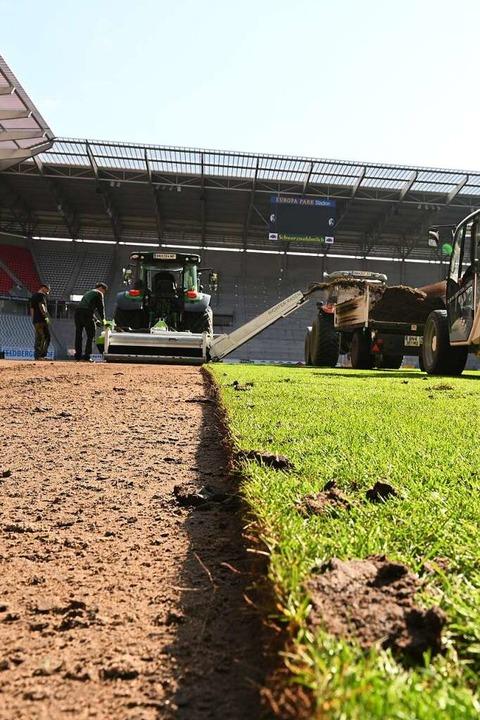 Sieht mehr nach landwirtschaftlicher Fläche  denn nach zartem Fußball-Grün aus.  | Foto: Achim Keller