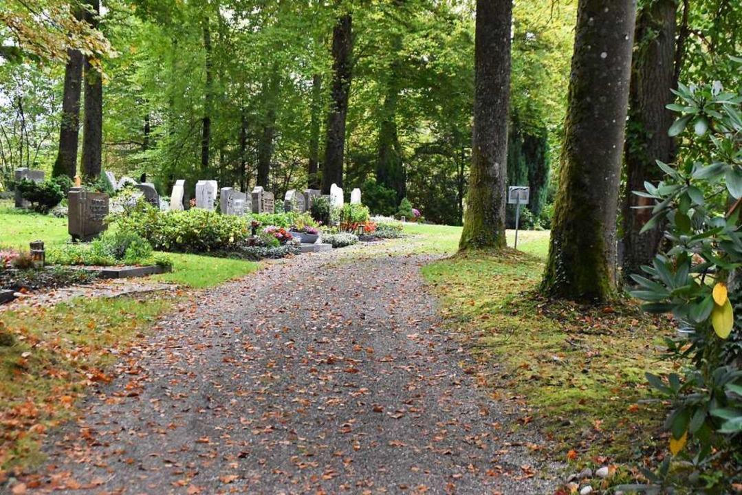 Der Gang über den Waldfriedhof Karsau ...ört sich an Laub und Gras auf dem Weg.  | Foto: Maja Tolsdorf