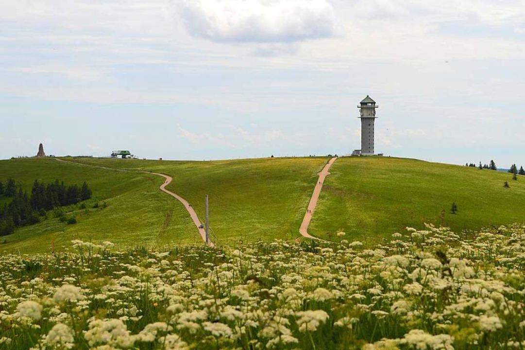 Feldbergturm.  | Foto: Billharz Wilhelm