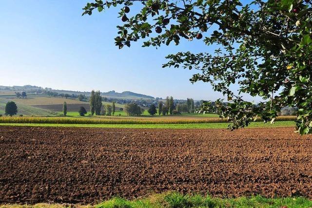 Die Landwirte im Kreis Lörrach reiben sich am Biodiversitätsgesetz